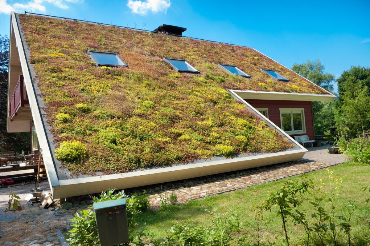 Faut-il faire appel à un couvreur pour un toit végétalisé